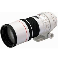 Canon EF 300mm f:4L IS USM Lens