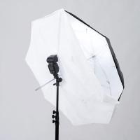 Lastolite-8-1-Umbrella-100cm-4538F